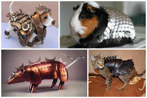 Боевые доспехи для животных