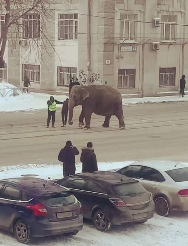 И всё это - Россия