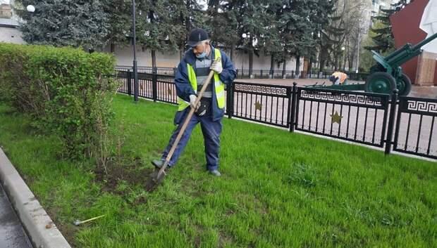 Кусты кизильника высадили у памятника ВОВ в микрорайоне Климовск Подольска