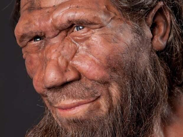 Ученые: вегетарианство помогло кроманьонцам победить неандертальцев