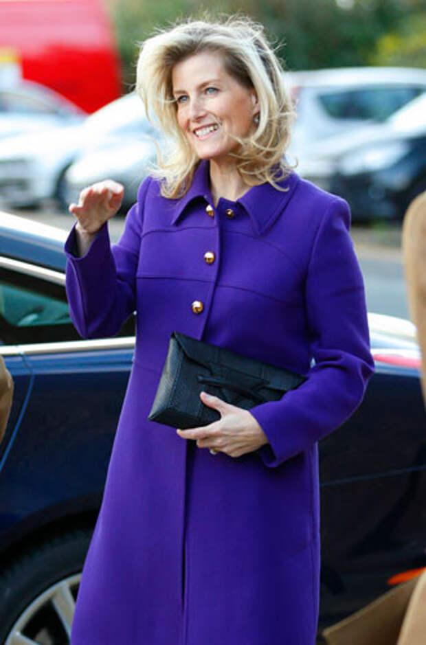 фиолетовый цвет в одежде Графиня Уэссекская