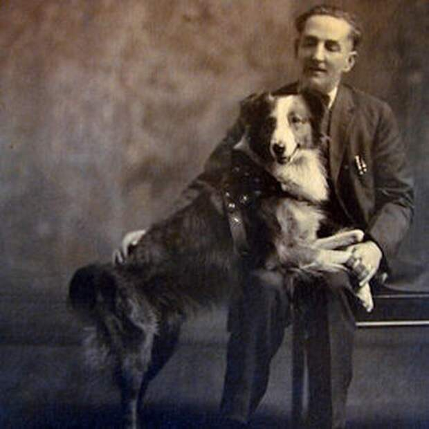 Пес Бобби со своим хозяином.