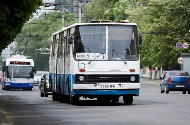 Пригородам столицы к осени будут переданы 58 автобусов