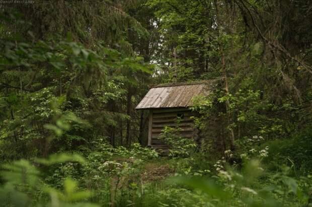 Тихий уголок благодати: Кенозеро, Архангельская область
