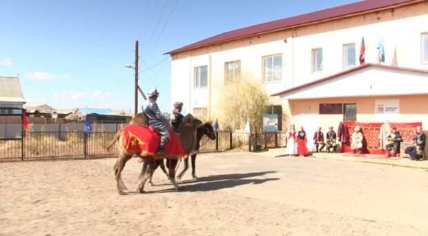 Жители Республики Алтай приехали голосовать на верблюдах