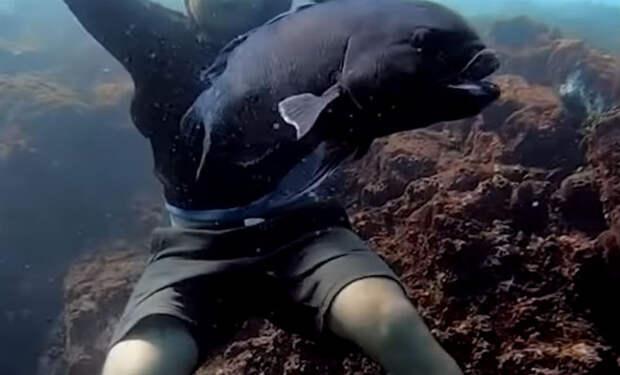 Мужчина закинул удочку и достал самую редкую в мире рыбу