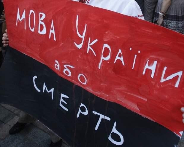 Блогеру из Киева устроили травлю из-за нелюбви к украинскому языку