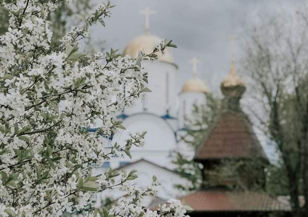 Неординарный снимок храма Торжества Православия в Алтуфьево появился в сети