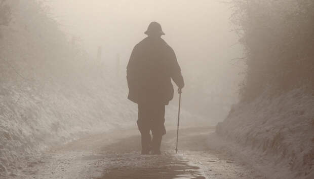 Надоели старики во власти: надо убирать