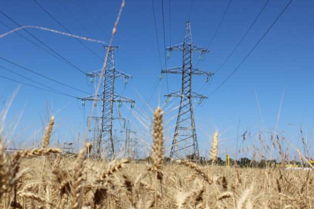 «Россети Кубань» обеспечили электроэнергией 100 объектов АПК на юго-западе края