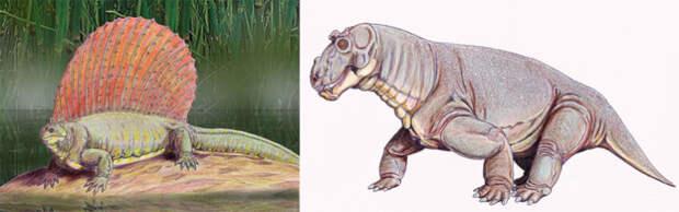 Представители пермской фауны эдафозавр и эстемменозух. /Фото:paleontologylib.ru