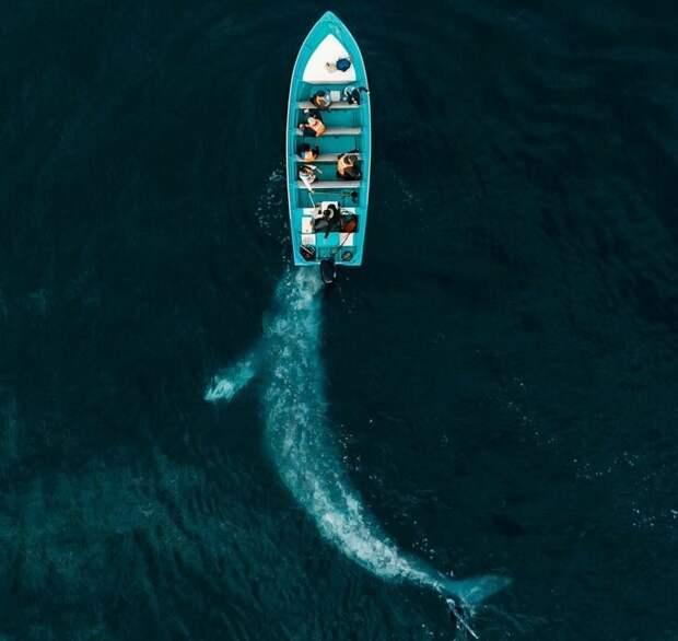 Jose G. Ruiz Cheires / National Geographic