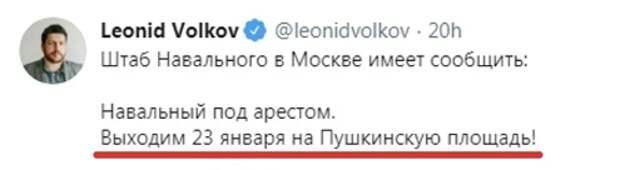 Расходный материал Навального в лицах
