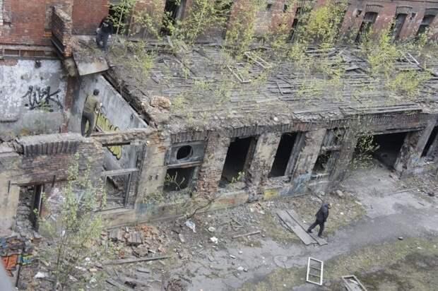 От королевства сладостей до детского приюта: заброшенные здания Санкт-Петербурга