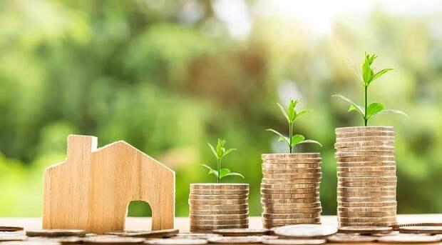 Экономика Кубани: во что вкладываются иностранные инвесторы?