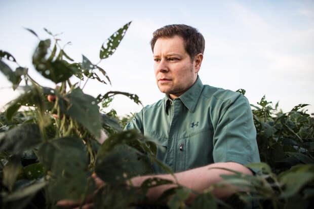 Рост концентрации углекислоты снижает питательную ценность растений