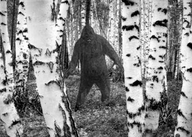 Образ менква вполне походит на то как изображают снежного человека. Источник: https://www.nakanune.ru