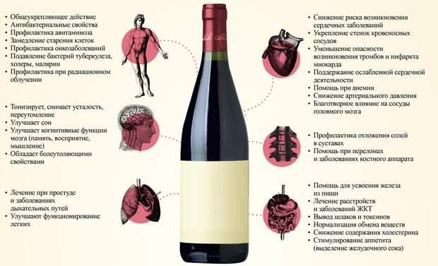 польза красного вина инфографика