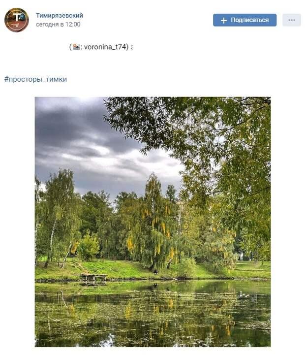 Фото дня: осенний пейзаж в окрестностях Лиственничной аллеи