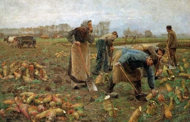 Что выращивали на Русском огороде до картошки и помидоров?