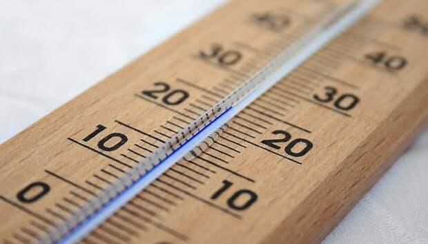 До плюс 10 градусов прогреется воздух в Московском регионе на выходных