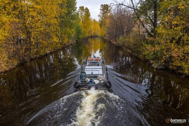 Неплохо для конца октября: в Петербурге довольно тепло и без ливней