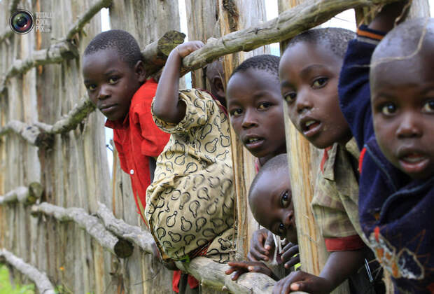 Дети из Конго