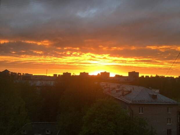 Фото: Ирина Лобанова, Страница «Сидим дома в Тушино [Северном и Южном]» социальной сети «ВКонтакте»