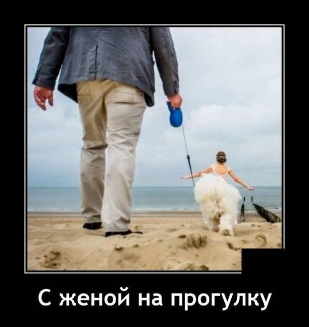 Демотиватор про прогулку