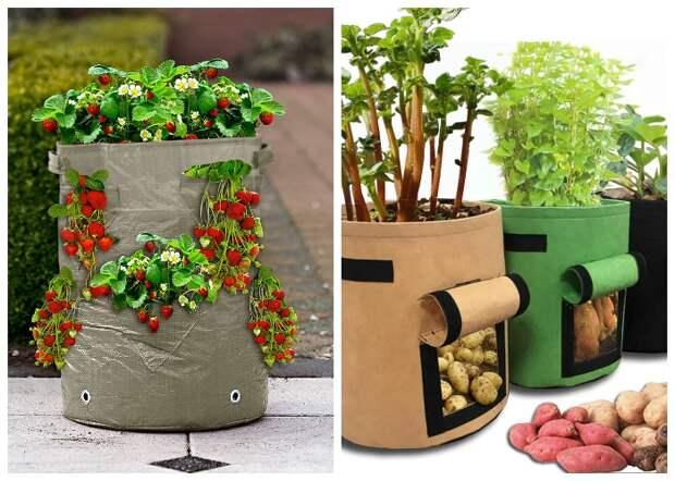 На современном рынке можно найти специальные мешки для выращивания различных видов овощей и ягод.