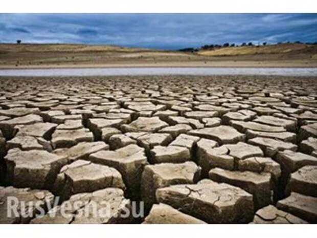 Жизнь превратится в ад — чем нам грозит глобальное потепление?
