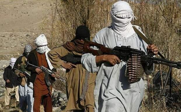 Талибы создадут новое правительство Афганистана из 12 влиятельных лиц