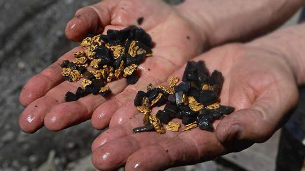 В Свердловской области спецназ задержал золотодобытчиков