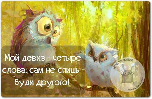 1421603163_frazki-20 (604x393, 220Kb)
