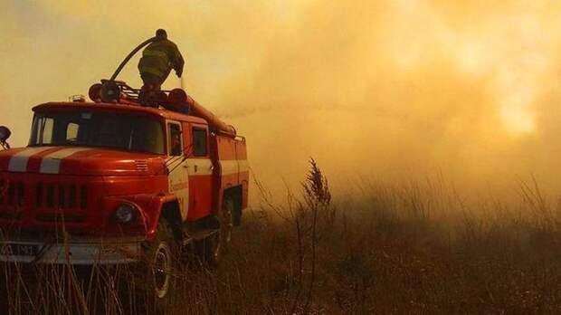 Пламя в зоне отчуждения сжигает села и подбирается к Чернобыльской станции