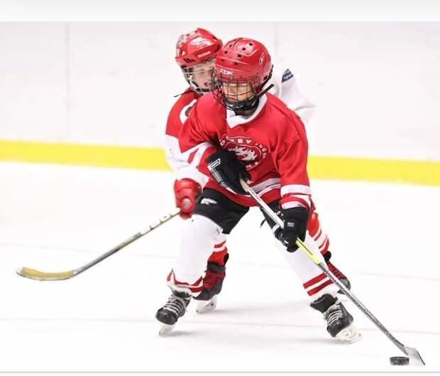 Одна из площадок хоккейного турнира «Золотая шайба» расположена в Лианозове
