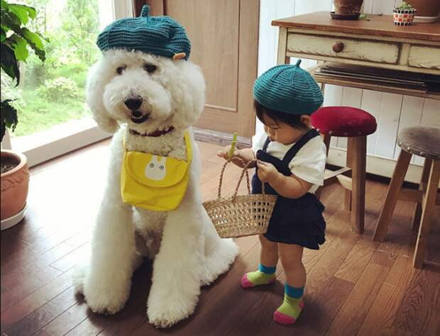 10 милых фото маленькой японской девочки, которая дружит с пуделем