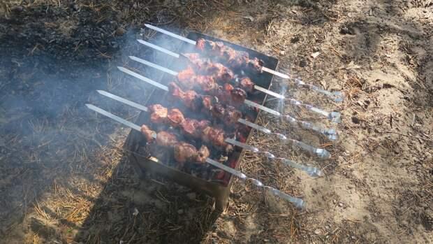 Любителям пикников с шашлыками напомнили о правилах пожарной безопасности