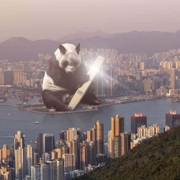 10. Я сказал, давай поедим в небоскрёбе ICC, а не съесть ICC Томми Фанг, гонконг, забавно, талант, фантазия, фото, фотошоп, художник