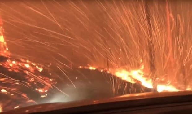 Отец и сын сняли на видео бегство из горящего леса на машине