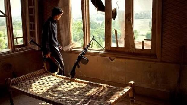 Клинцевич назвал цель фейка США о связи ГРУ и «Талибана»