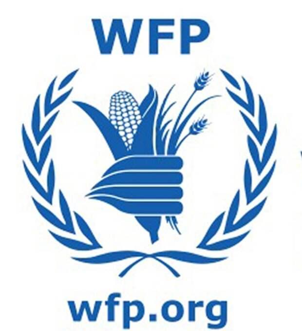 Нобелевскую премию мира получила структура ООН