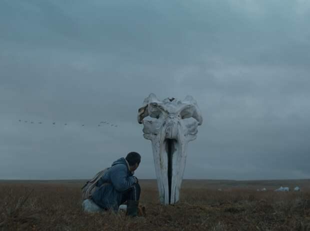 «Китобой» и «Спасибо, коучер!» включены в программу британской «Недели российского кино»