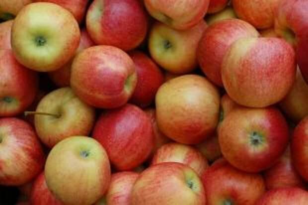 Как распознать плохие яблоки?