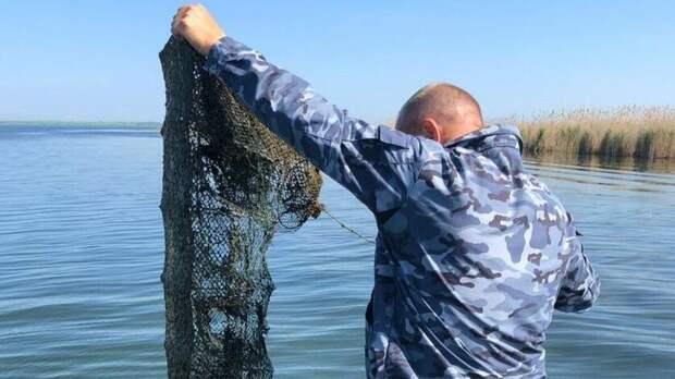 Втрети водоемов Ростовской области нельзя разводить рыбу