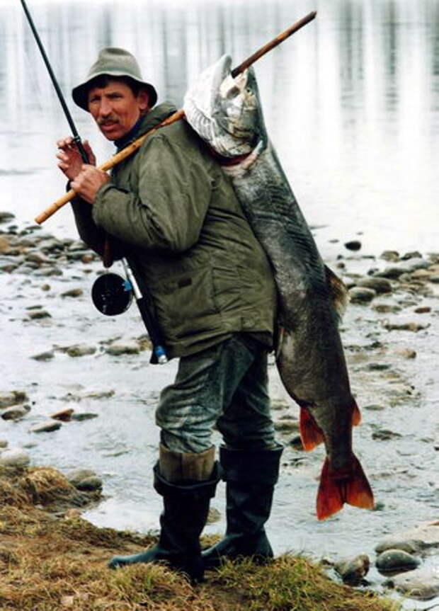 Семь советов успешной рыбалки для новичков.