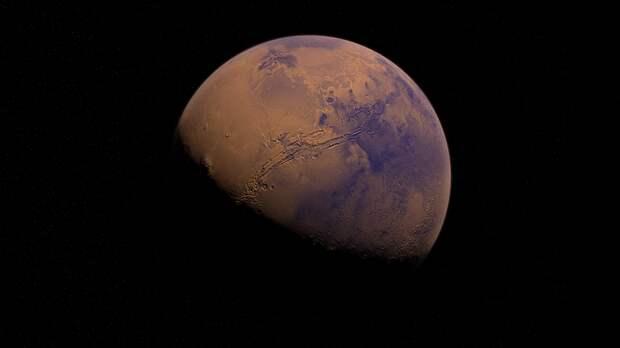 Британский астрофизик раскритиковал идеи Илона Маска