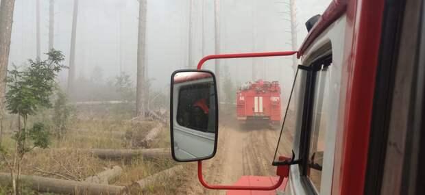 Пожарные Удмуртии продолжают участвовать в тушении заповедника в Мордовии