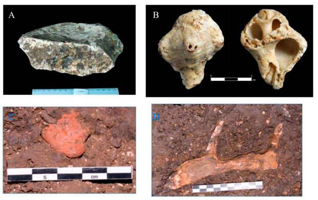 Куда ведут неандертальские ноги из Эйн-Кашиш?