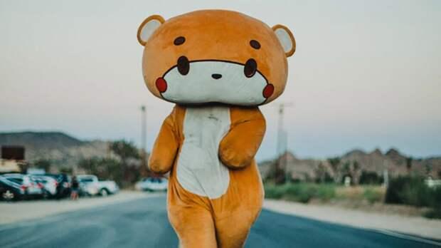 Американец в костюме медведя прошел 770 км пешком ради благотворительности